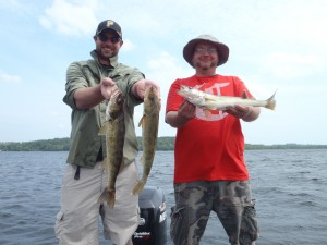 Kawartha Walleye 3